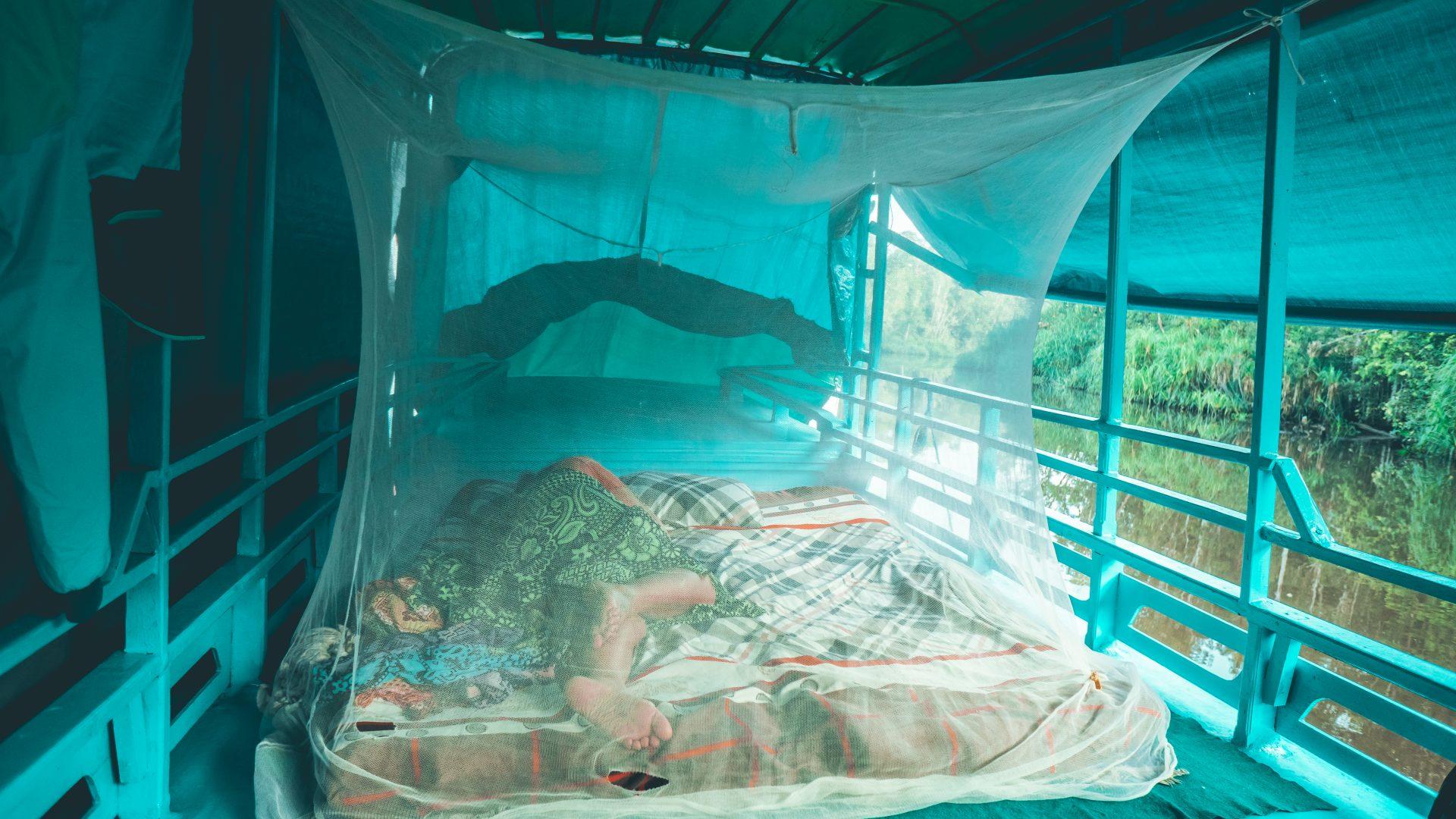 Borneo en Kotok buscando orangutanes