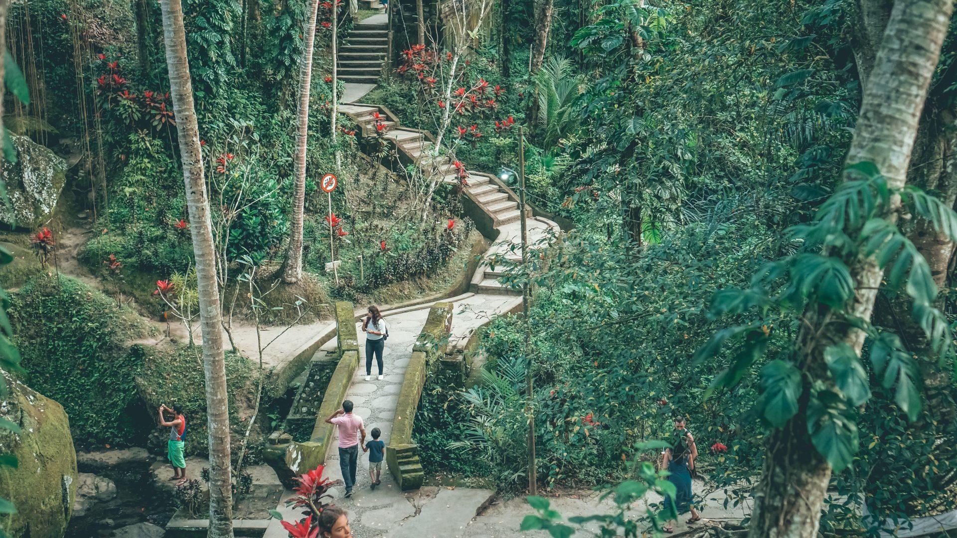 Templo de los monos en Ubud