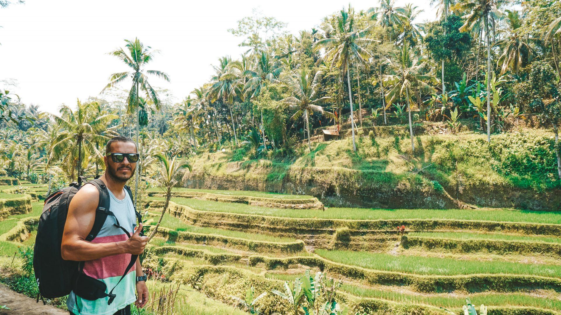 Los arrozales Tegalaland y templos cercanos