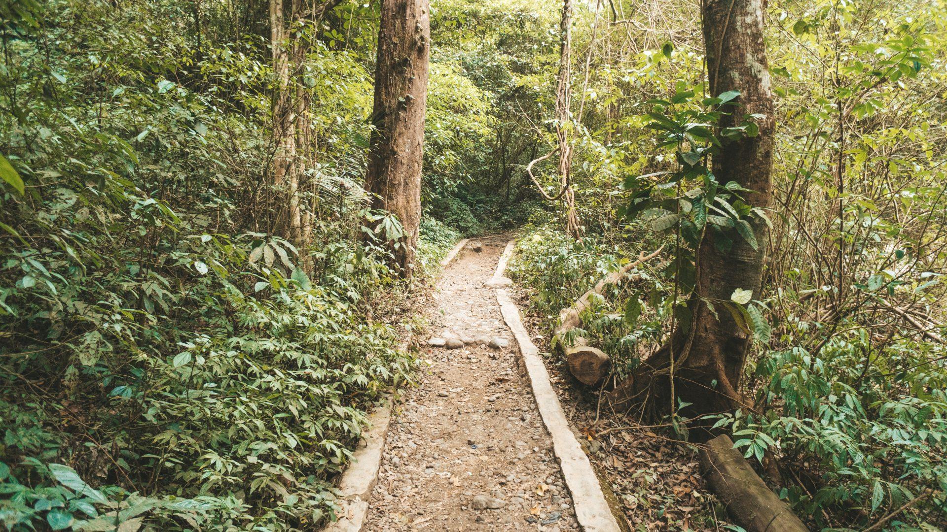 Las mejores cascadas de Lombok